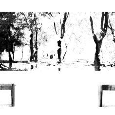 EL BOSQUE DE L/N, 2016 infografía 42x59,4 cm